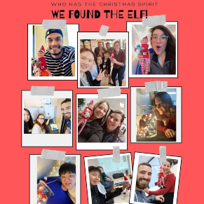 ilsc-greystone-college-adelaide-find-the-elf-with-koala