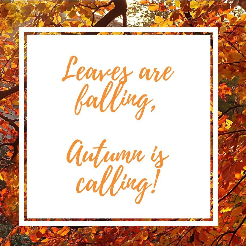 Autumn is calling