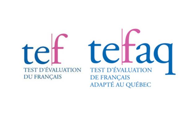 TEFAQ-Logo
