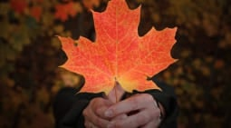 img_menu_Work_in_Canada